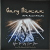 Gary Numan 2020 When The Sky Came Down Moonphase Vinyl